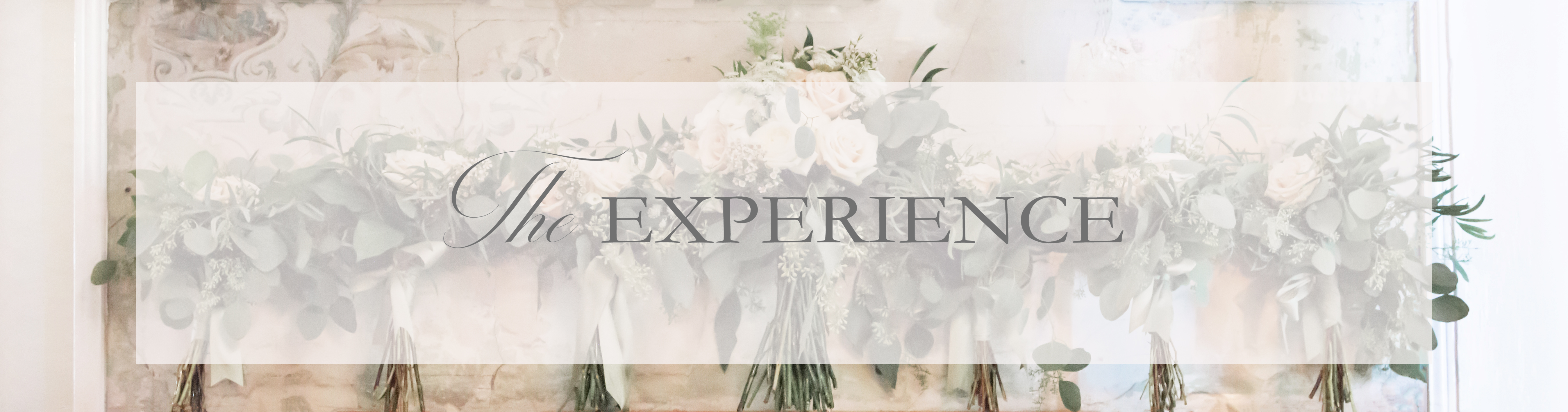 Annie Elise Wedding Experience and Investment