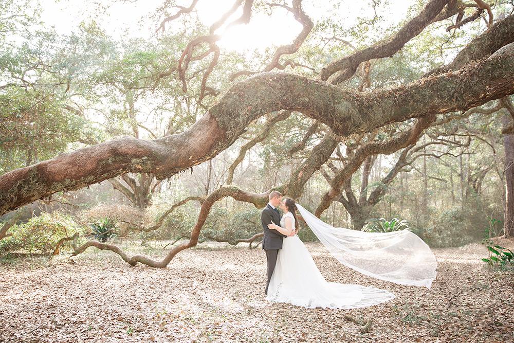 Annie Elise Photography | Twelve Oaks nature trail | ocean springs | big oak tree | bride and groom portraits