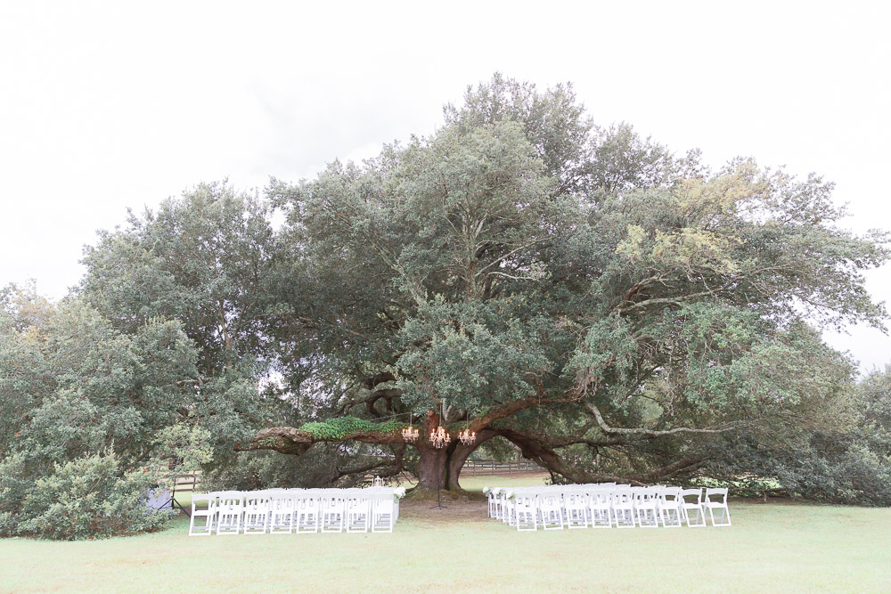 Erin + Jesse Venue at Roseoak, Petal MS-135